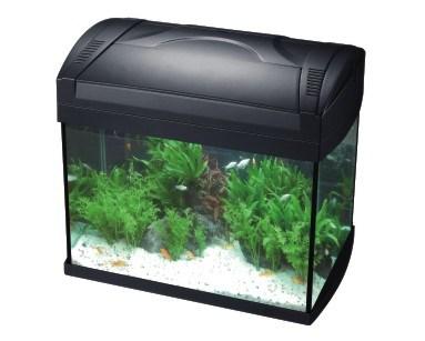 HS aqua aquarium tico 48