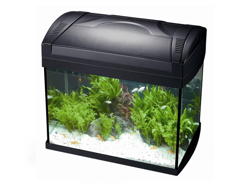 HS aqua aquarium tico 20